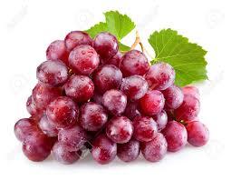 Die Herstellung von Rotwein